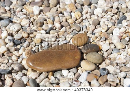 Stone Foot On The Stony Beach