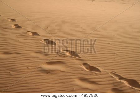 Foot Steps In Sahara Desert