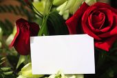 stock photo of saying sorry  - A red rose and orchids with a blank white card for a message - JPG