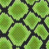 stock photo of venomous animals  - Green seamless pattern of reptile  skin for background design - JPG