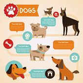 stock photo of pug  - Vector set of infographics design elements  - JPG