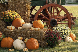 picture of wagon  - This is a old antique wagon and fall display of pumpkins - JPG