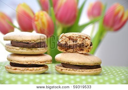Homemade Macarons filled with chocolate ganache