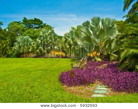Colorful Tropical Garden Landscaping