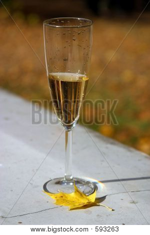 Wine-glass - 1