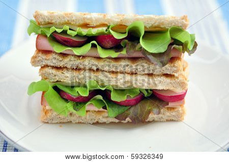 Closeup of a thick, tasty, delicious deli sandwich.
