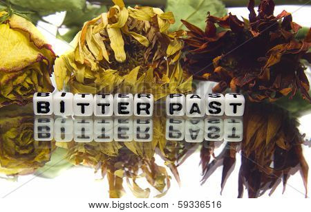 Bitter Past With Old Flowers