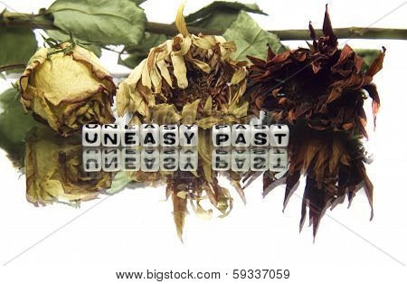 Uneasy Past With Old Flowers