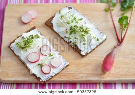 Wholesome sandwich with cheese and garden radish