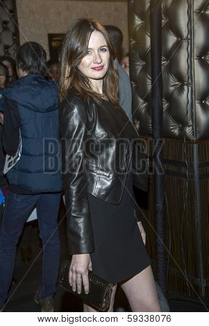 NEW YORK-FEB 1: Actress Emily Mortimer attends the 66th Annual Writers Guild Awards Ceremony at the Edison Ballroom on February 1, 2014 in New York City.