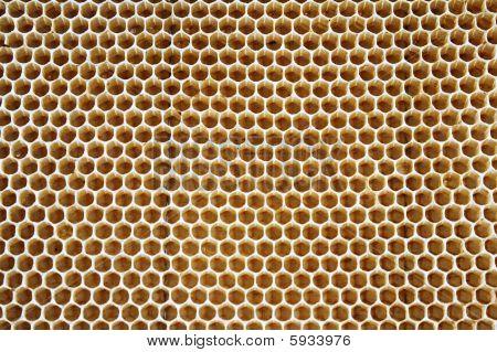 Honey texture