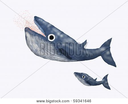 Mother blue whale eating