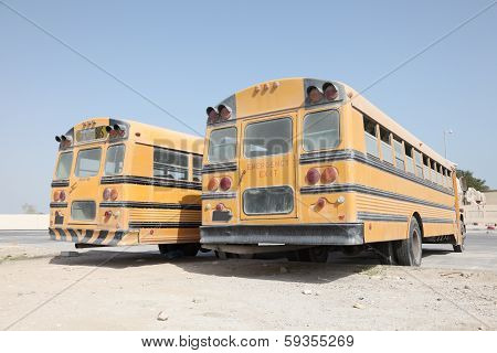 Two Yellow School Buses