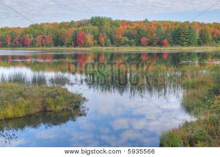 Autumn Doe Lake