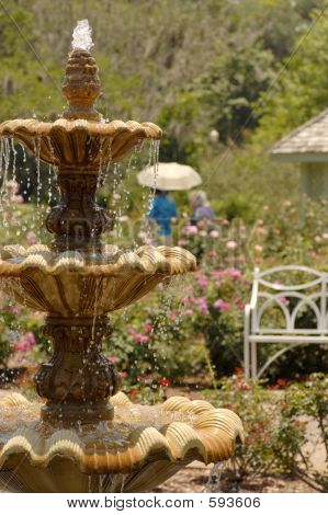 Fountain In Rose Garden