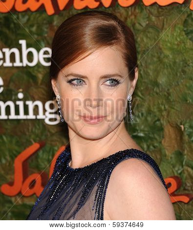 LOS ANGELES - OCT 17:  Amy Adams arrives to the Wallis Annenberg Center for the Performing Arts Gala  on October 17, 2013 in Beverly Hills, CA