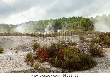 Landscape with steaming hot springs in Wai-O-Tapu,   North Island, New Zealand.