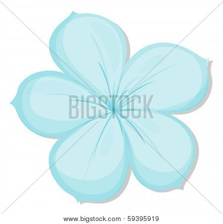 Illustration of a five-petal flower on a white background