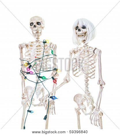 Captive Christmas Skeleton