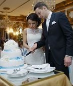 picture of cake stand  - Beautiful bride and groom making a wish as they stand cutting the wedding cake together in an elegant reception venue - JPG