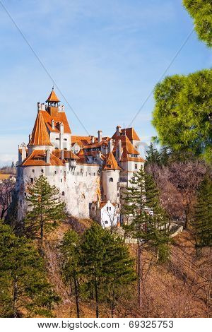 Beautiful view of Bran Castle (Dracula castle)