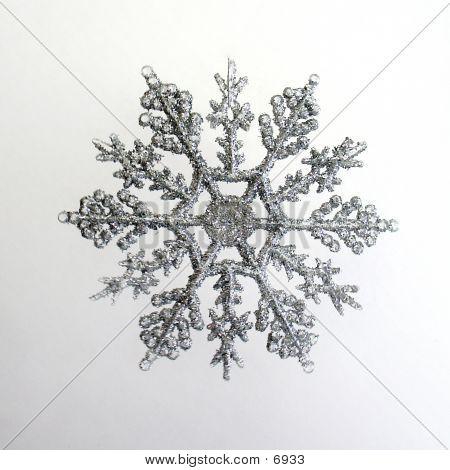 Copo de nieve de plata