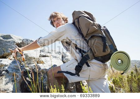 Handsome hiker hiking through rough terrain on a sunny day