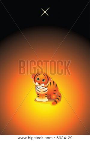 Tiger Bebe.
