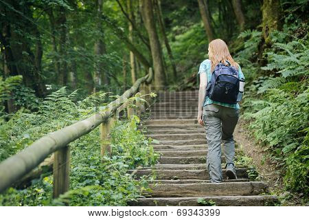 Woman Climbing Stairs In A Forest