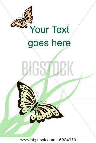 Vector card with butterflies and grass