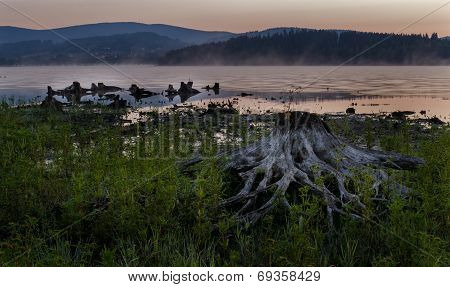 Sunrise At The Lake Lipno
