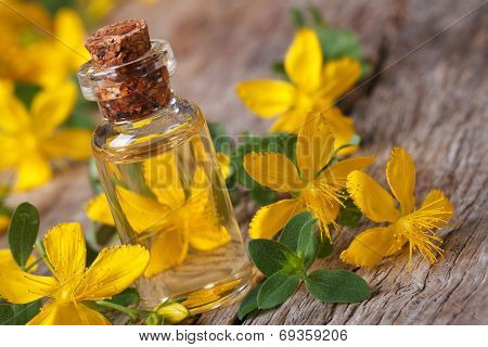 Tincture Of St. John's Wort In A Glass Bottle Macro Horizontal