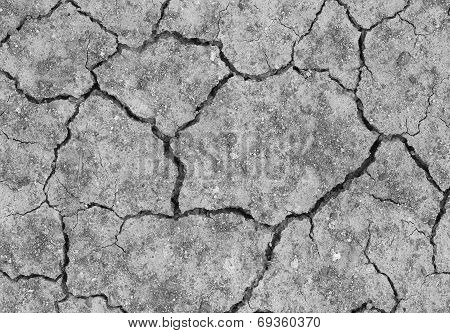 Cracked Soil Ground