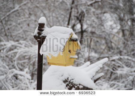 frozen birdhouse