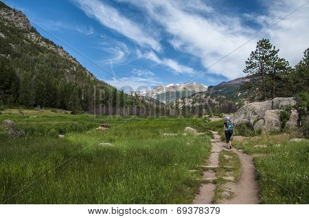 Female Hiker On The Cub Lake Trailhead In Rocky Muntain National Park
