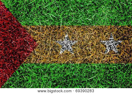 Sao Tome And Principe Flag Color Grass Texture Background