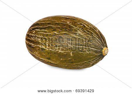 Fresh Piel De Sapo Melon