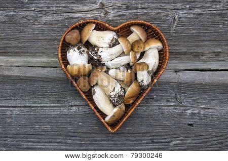 Mushroom Fungi Boletus In Heart Form Basket On Wooden Background