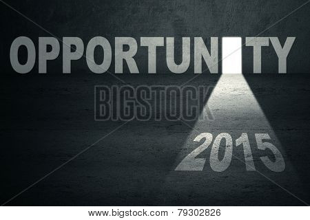 Opened Opportunity Door With Number 2015