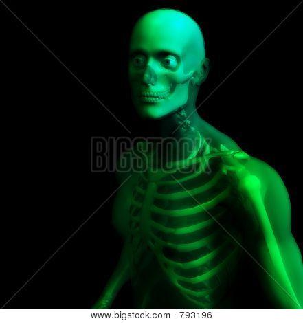 Man Bone 16