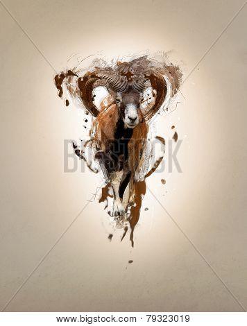 Mouflon, abstract animal concept