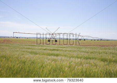 Green Field Irrigate Wheels