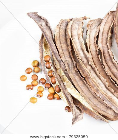 Dried Winged Bean Seed And Bean Pod On White Dish