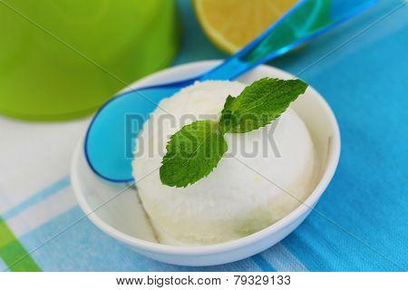 Lemon sorbet garnished with mint leaf