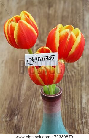 Gracias card (which means thank you in Spanish) with red and yellow tulips