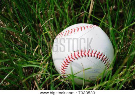 Baseball ball in grass