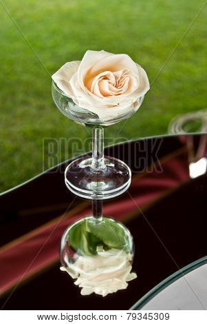 A White Rose In Champagne Glass