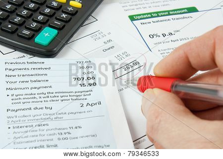 Checking Bank Statements With Calculator