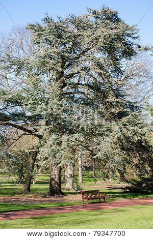Edinburgh Royal Botanical Garden