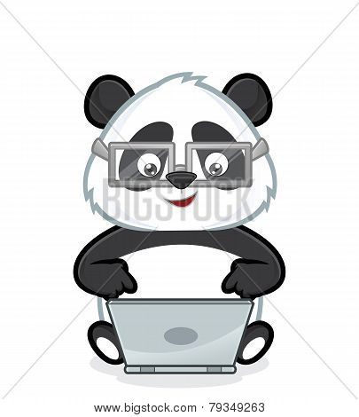 Panda with laptop